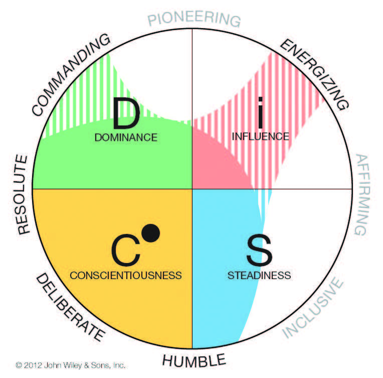 DISC SOLUTIONS PERSONALITY ASSESSMENT