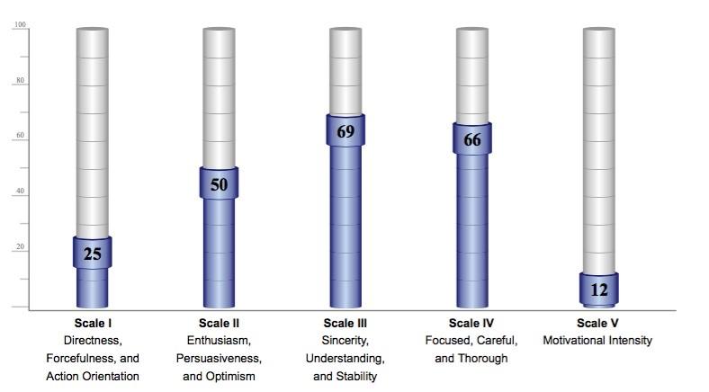Assessment Leaders Profiles Performance Indicator diagram
