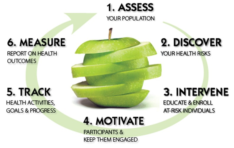 Assessment Leaders employee career lifecyle Wellness apple graphic